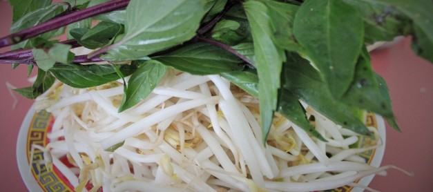 베트남 소고기 국수